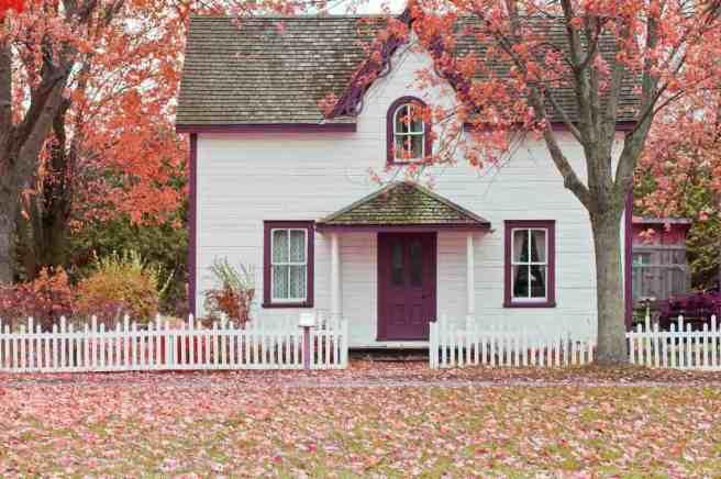 logement en bon état bail de location